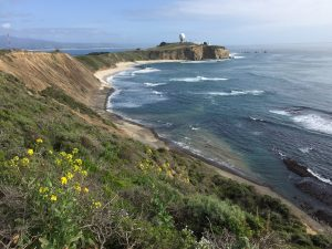 Pillar Point Bluff