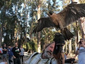 Kenny Elvin with one of his birds of prey