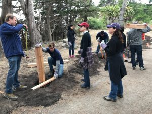A corporate volunteer group builds a fence at Fitzgerald Marine Reserve