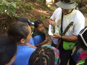 Become a nature hike docent