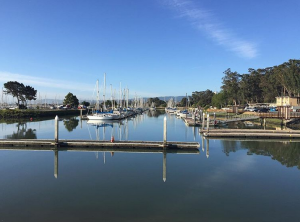 Coyote Point marina
