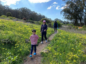 Hiking with the family