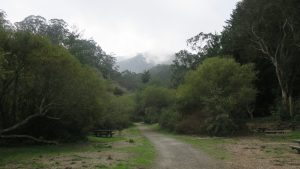 hills shrouded in fog at san pedro valley