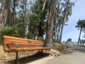 Bench at Coyote Point